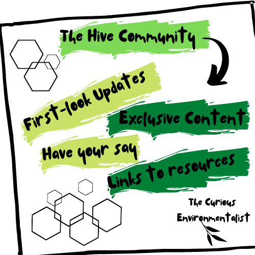 the-hive-newsletter
