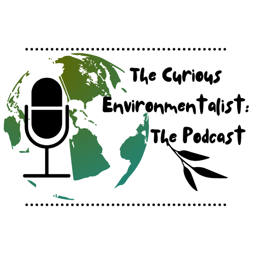 the-podcast